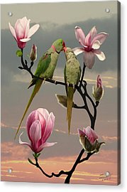 Two Parrots In Magnolia Tree Acrylic Print