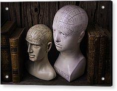 Two Phrenology Heads Acrylic Print by Garry Gay