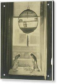 Two Porcelain Birds Underneath A Birdcage Acrylic Print