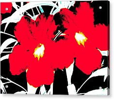 Two Red Jack Flowers Acrylic Print