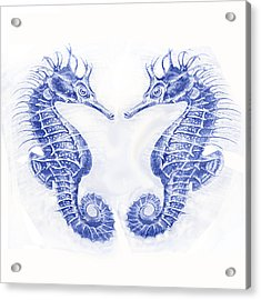 Two Seahorses- Blue Acrylic Print