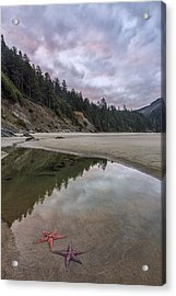 Two Stars At Daylight Acrylic Print by Jon Glaser