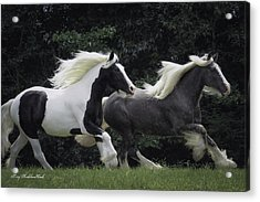Two Together In Cadence Acrylic Print