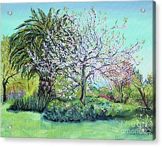 Two Trees Like Springtime Lovers Acrylic Print by Asha Carolyn Young
