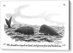 Two Whales Are Seen In Water In Conversation Acrylic Print by Sam Gross