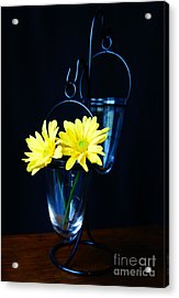 Two Yellow Daisies Acrylic Print