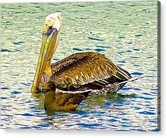 Two's Company Acrylic Print by Brian D Meredith