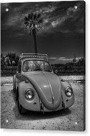 Tybee Island Beach Bug 002 Bw Acrylic Print