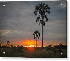 Typical African Sunset Acrylic Print