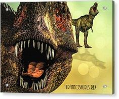 Tyrannosaurus Rex 4 Acrylic Print by Bob Orsillo