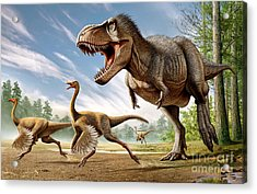 Tyrannosaurus Rex Attacking Two Acrylic Print by Mohamad Haghani