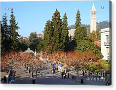 Uc Berkeley . Sproul Plaza . Sather Gate And Sather Tower Campanile . 7d10002 Acrylic Print by Wingsdomain Art and Photography