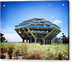 Acrylic Print featuring the photograph Ucsd Geisel Library by Nancy Ingersoll