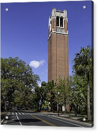 Uf Century Tower And Newell Drive Acrylic Print by Lynn Palmer