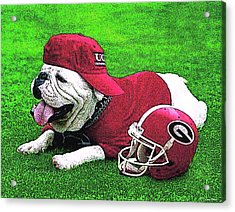 Uga With Helmet T-shirt Acrylic Print