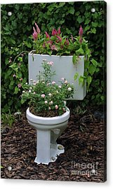 Ultimate Flower Pot 3 Acrylic Print