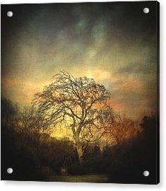 Un Dernier Crepuscule Acrylic Print by Taylan Apukovska