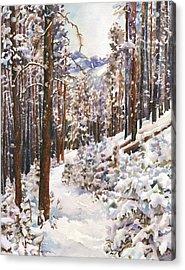 Unbroken Snow Acrylic Print by Anne Gifford