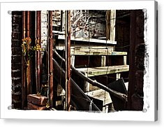 Uncommon Beauty Acrylic Print by Tanya Jacobson-Smith