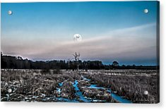 Under Cold Moonlight In Blue Acrylic Print