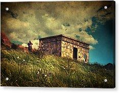 Under Dreamskies Acrylic Print by Taylan Apukovska