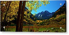 Under Golden Trees Acrylic Print