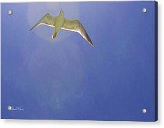 Under His Wings II Acrylic Print