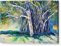 Under The Banyan Tree Acrylic Print by Sally Simon