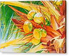 Under The Coconut Palm Acrylic Print by Janis Grau