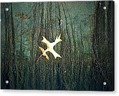 Under The Current Acrylic Print by Lisa Plymell