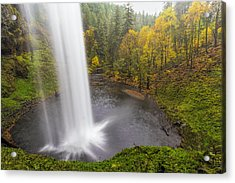 Under The Falls With Autumn Colors In Oregon Acrylic Print by David Gn