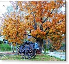 Under The Maple Tree Acrylic Print