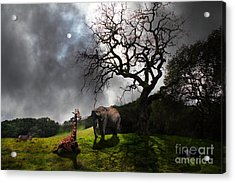 Under The Old Oak Tree - 5d21097 - Horizontal Acrylic Print by Wingsdomain Art and Photography