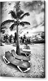 Under The Palm Tree Acrylic Print by John Rizzuto