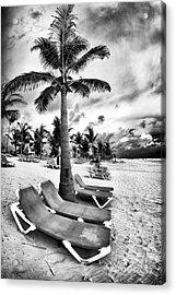 Under The Palm Tree Acrylic Print by John Rizzuto