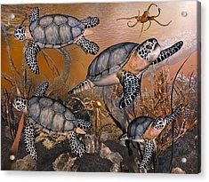 Under The Red Sea Acrylic Print by Betsy Knapp