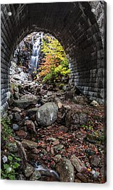 Under The Road Acrylic Print by Jon Glaser