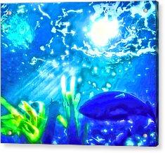 Under The Sea Illumination Acrylic Print by Tracie Kaska
