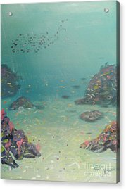 Under The Sea Acrylic Print