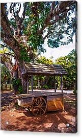 Under The Shadow Of The Tree. Eureka. Mauritius Acrylic Print by Jenny Rainbow