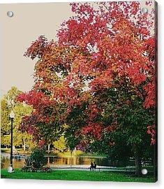 Under The Tree Canopy At Public Garden Acrylic Print