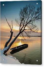 Under The Tree Acrylic Print by Davorin Mance