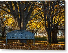 Under The Tree Acrylic Print by Sebastian Musial