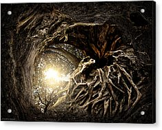 Under The Trees #1 Acrylic Print by Matthias Bergolth