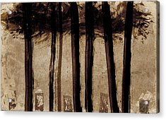 Under The Trees Acrylic Print by Carol Leigh