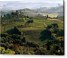 Under The Tuscan Sun Acrylic Print by Ira Shander