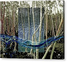 Undercurrent Acrylic Print by Maria Jesus Hernandez