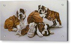 Underdogs Acrylic Print