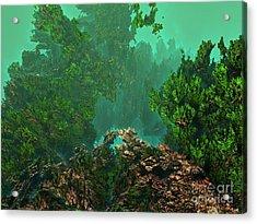 Underwater 8 Acrylic Print by Bernard MICHEL