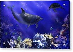 Underwater Encounter Acrylic Print